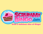 Free online bingo no deposit required win real money